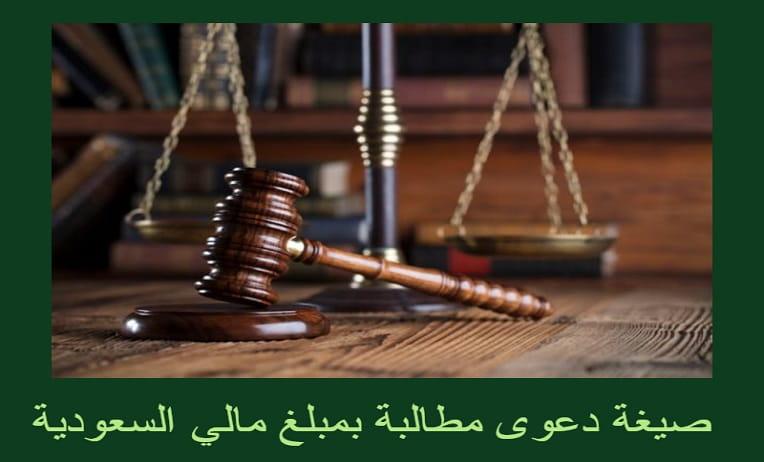 صيغة دعوى مطالبة بمبلغ مالي السعودية